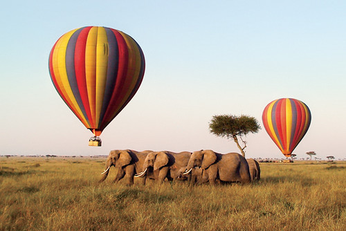 masai mara hot air ballons